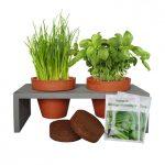 Plateau Herbes Aromatiques